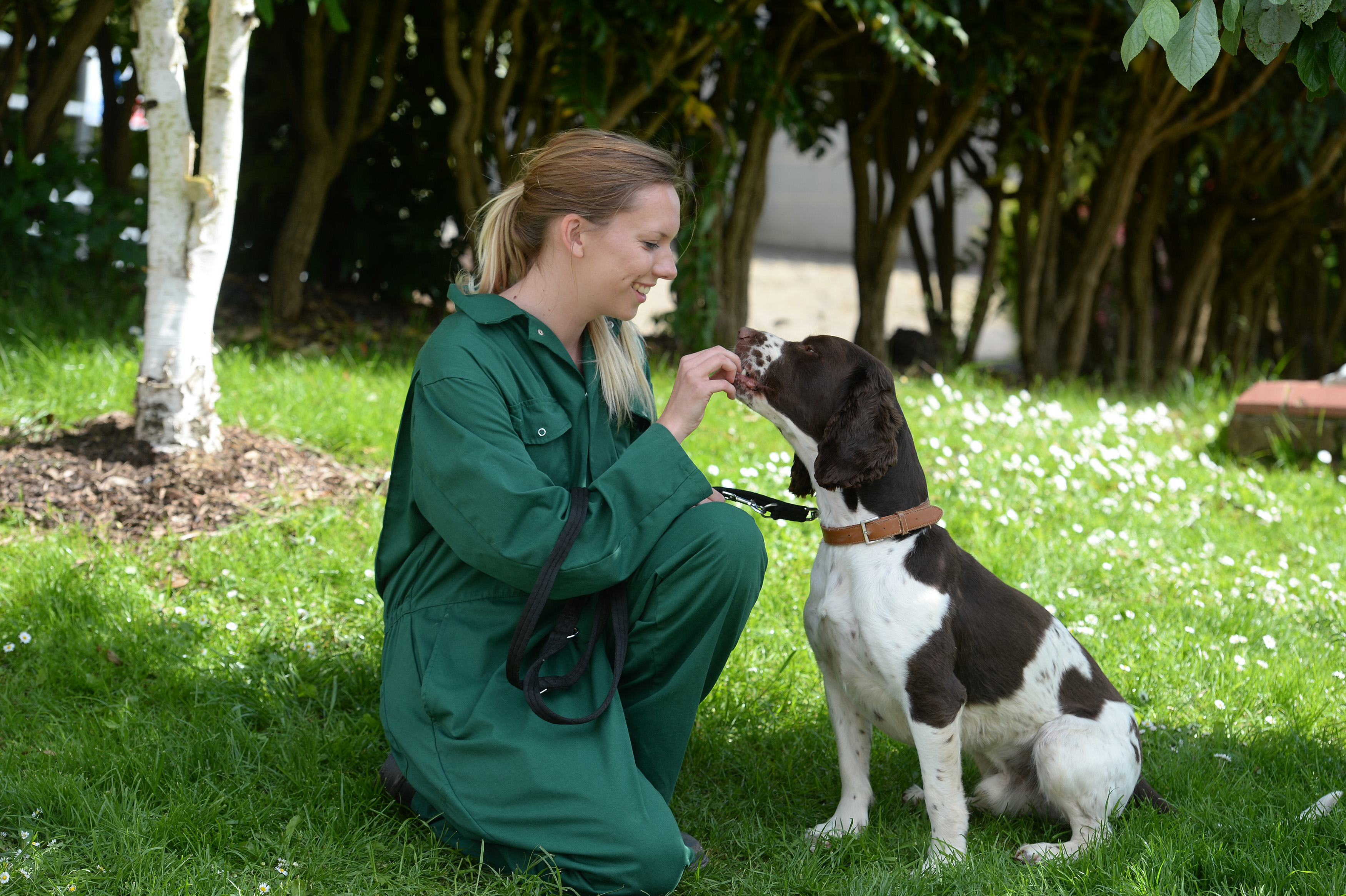 Animal Care Management Careers National Land Based College