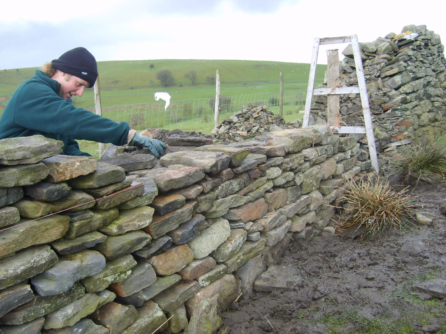 Environmental Conservation & Dry Stone Walling
