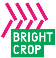 Bright Crop