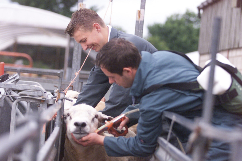 Apprenticeship Agriculture Scotland