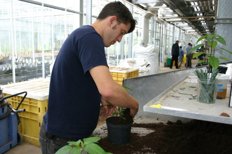 Certificate in Horticulture