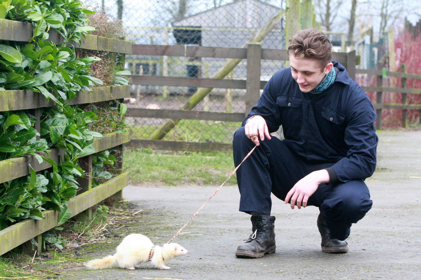 Animal Management at Reaseheath College